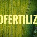 Biofertilizer Buesines Outlook