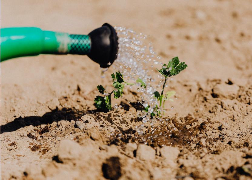 Irrigation System- Global Market Database